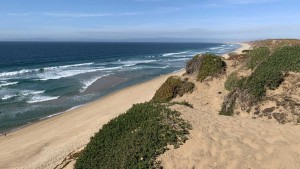 fort-ord-dunes-state-park-1582163022